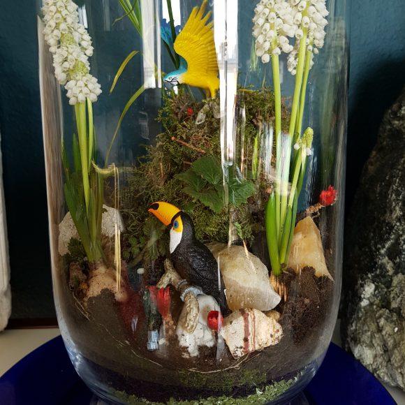 Terrarium mit Papagei
