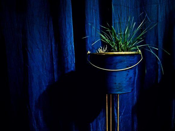 Dekoidee-blauer-Topf-mit-Blume-by-Ferdinand-Interior-Wien
