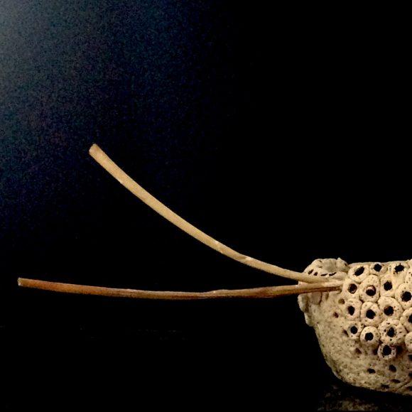 Vase-aus-Ton-Steirischer-Stier-abend-links