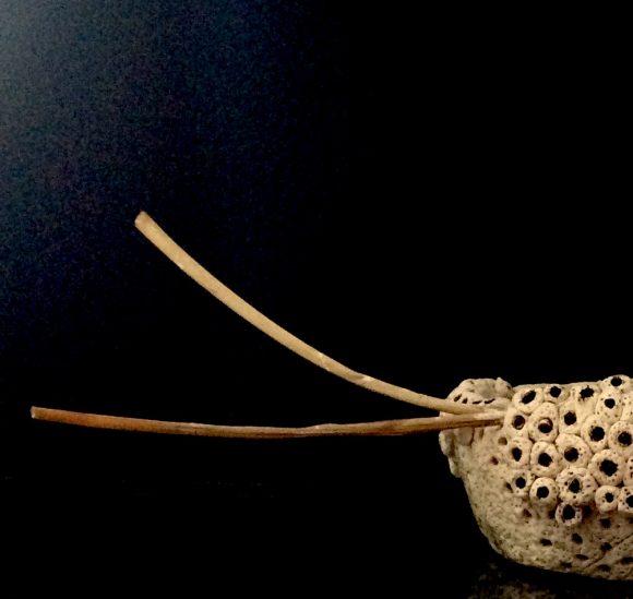 Vase-aus-Ton-Steirischer-Stier-links