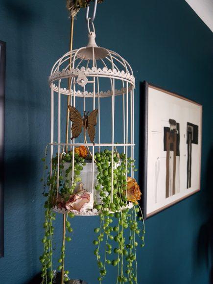 dekoidee-pflanzen-selbst-gemacht-by-raumgestalter-ferdinand-interior